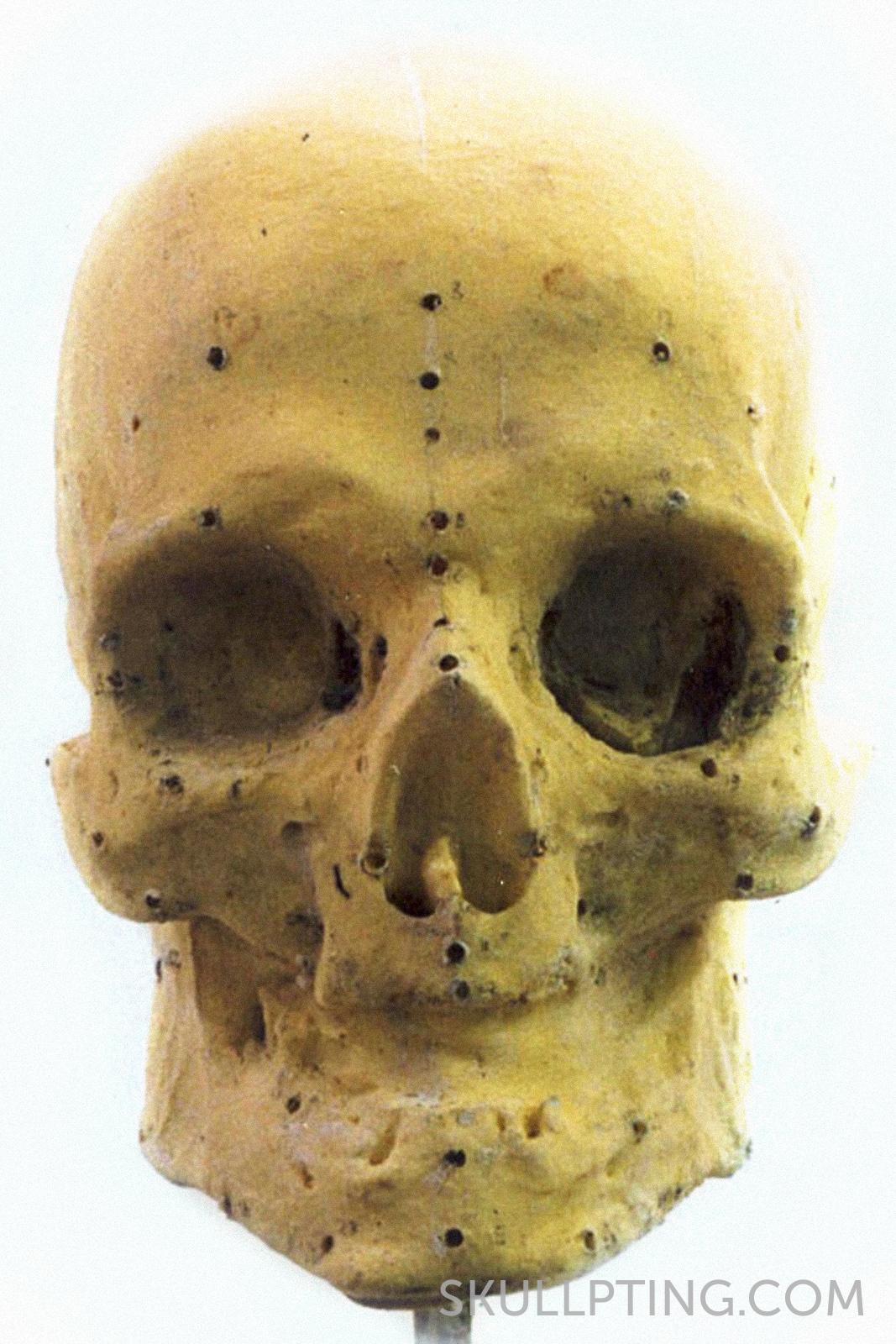 01-CRP-BopZ 1 schedel_