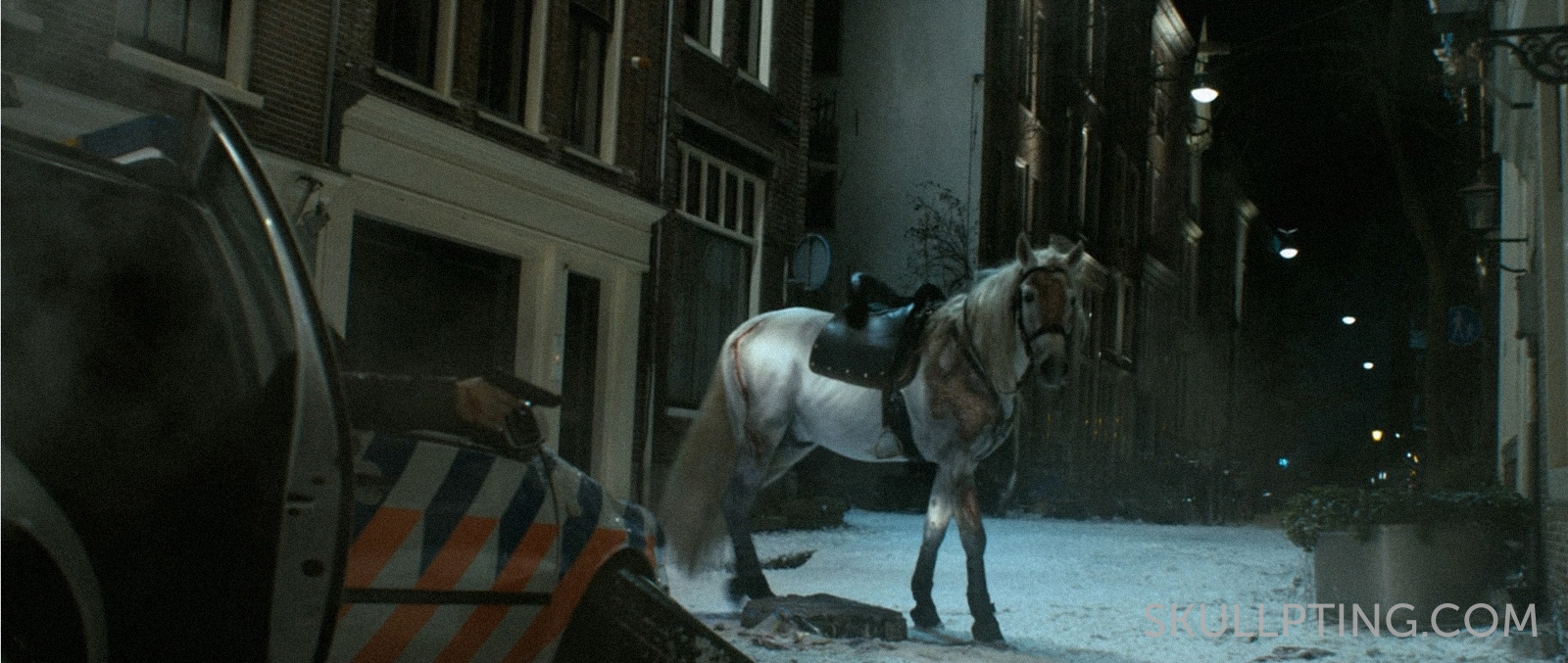 paardenwonden